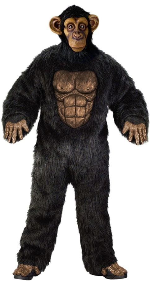 Complete Chimp -0