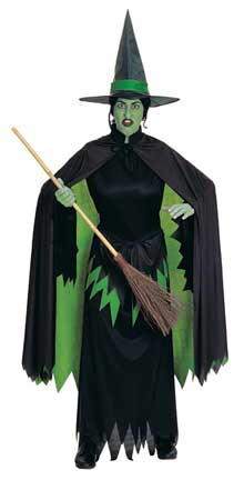 Wicked Witch Adult Costume-0