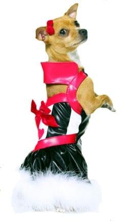 Queen of the Puppies Pet Costume-0