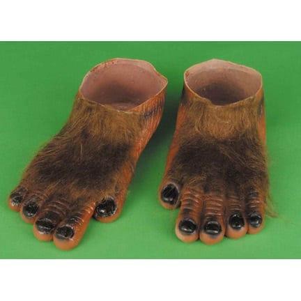 Brown Hairy Feet-0
