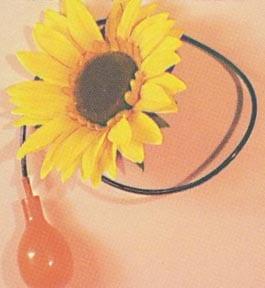 Squirt Flower - Sunflower-0