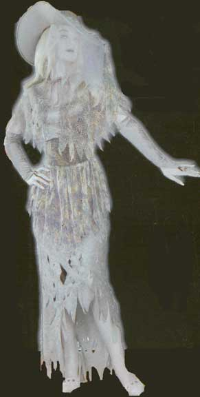 Ghostly Gal Adult Costume-0
