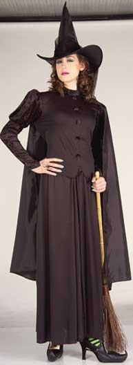 Classic Witch Plus Size Costume-0