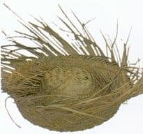 Straw Bird's Nest-0