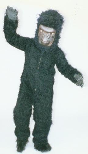 Gorilla - George -0