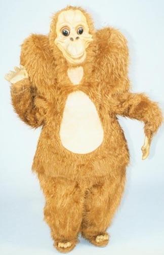 Orangutan - Ollie-0