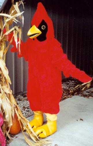 Cardinal - Red-0