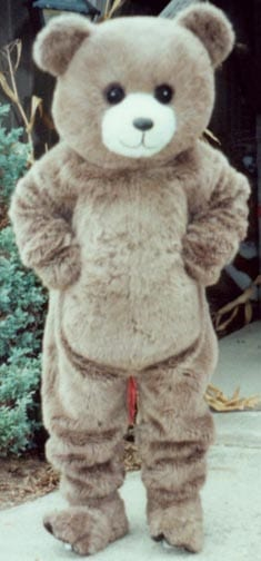 Bear - Cadderly -0