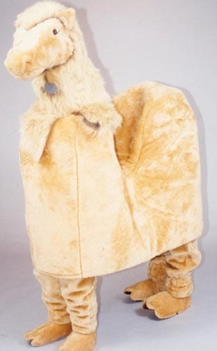 Camel - Carl-0