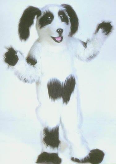 Dog - Shaggy-0