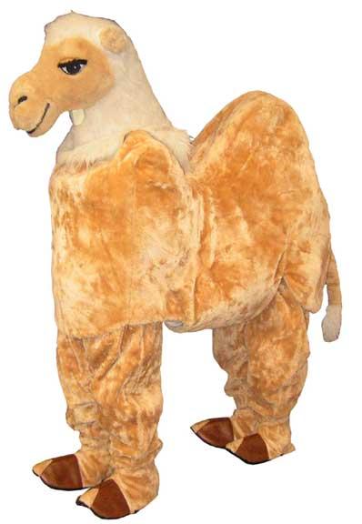 Camel - Clara-0