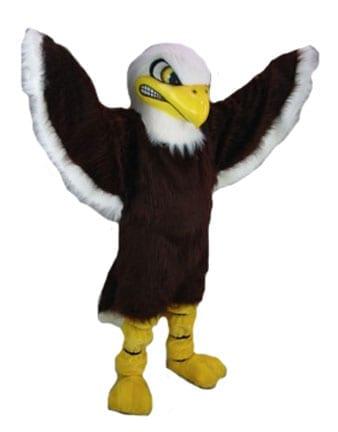 Bald Eagle-0