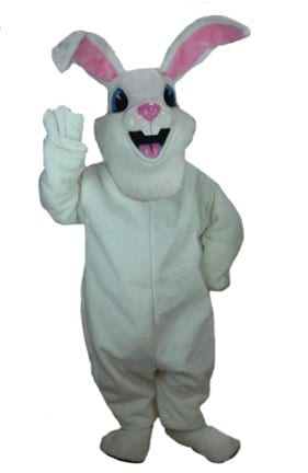 Jack Rabbit-0