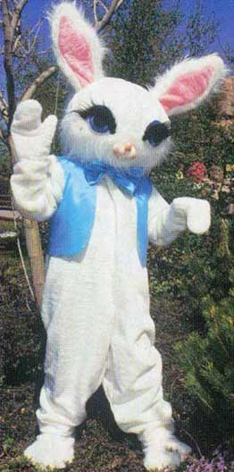 Cotton Bunny-0